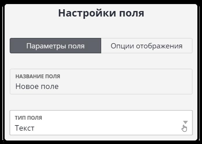 Конвертация данных из текстового поля